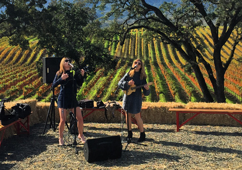Live Music on the Vineyard